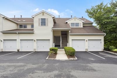 Bernards Twp. Condo/Townhouse For Sale: 273 Potomac Dr #273