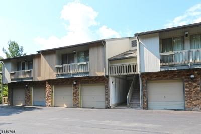 West Orange Twp. Condo/Townhouse For Sale: 6 Karam Cir