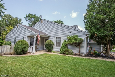 Edison Twp. Single Family Home For Sale: 8 Woodbury Rd