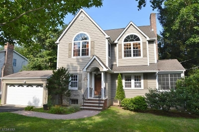 Florham Park Boro Single Family Home For Sale: 99 Ridgedale Ave