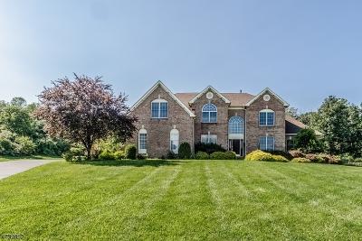 Bethlehem Twp. Single Family Home For Sale: 230 Garrison Ct