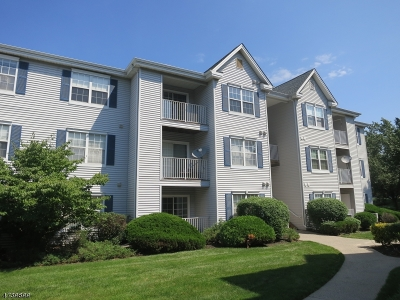 Bridgewater Twp. Condo/Townhouse For Sale: 211 Stratford Pl