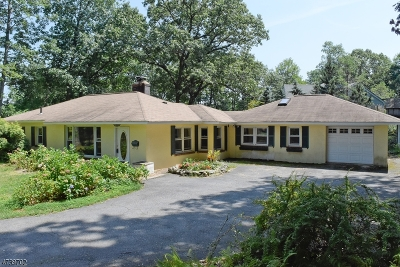 Parsippany Single Family Home For Sale: 96 Union Hill Rd