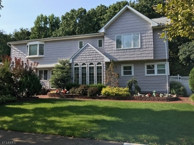 Springfield Twp. Single Family Home For Sale: 25 Laurel Dr