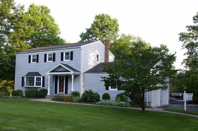 Bernards Twp. Single Family Home For Sale: 52 Atlas Rd