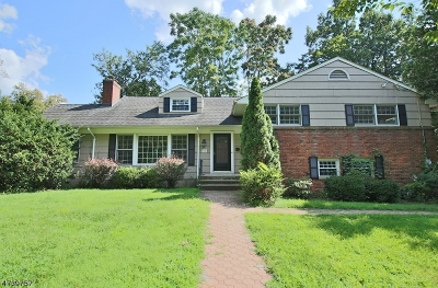 Morristown Town NJ Single Family Home For Sale: $420,000
