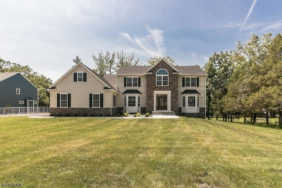 Bridgewater Twp. Single Family Home For Sale: 659 Foothill Rd