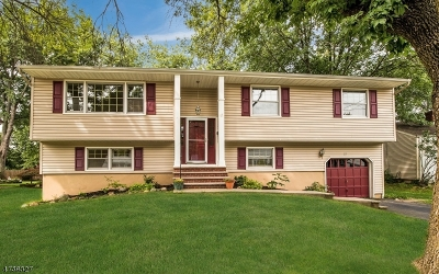 Edison Twp. Single Family Home For Sale: 23 Eileen Way