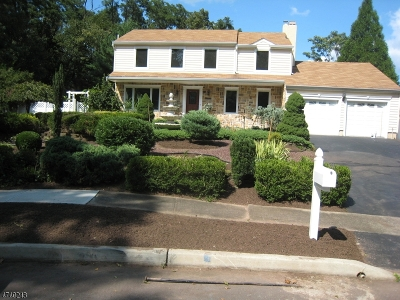 Piscataway Twp. Single Family Home For Sale: 26 Jasmine Dr