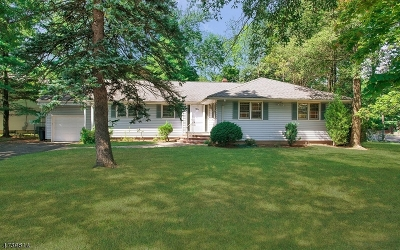 Livingston Twp. Single Family Home For Sale: 2 Broadlawn Dr