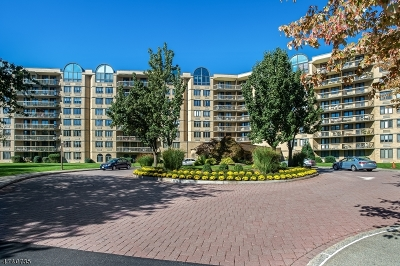 West Orange Twp. Condo/Townhouse For Sale: 10 Smith Manor Blvd #602