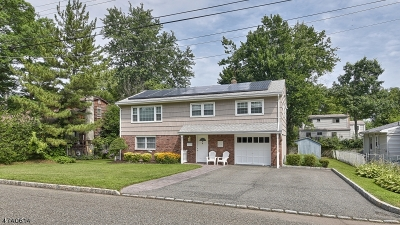 Parsippany Single Family Home For Sale: 150 Longview Ave
