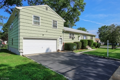 Piscataway Twp. Single Family Home For Sale: 14 Winans Ave