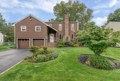 Cranford Twp. Single Family Home For Sale: 20 Lenhome Dr