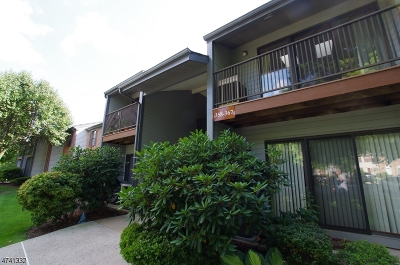 Bernards Twp. Condo/Townhouse For Sale: 360 Penns Way