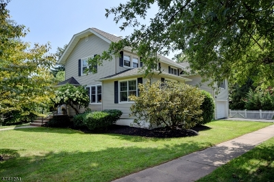 Florham Park Boro Single Family Home For Sale: 22 W End Ave
