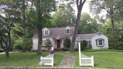 Morris Twp. Single Family Home For Sale: 41 Ferndale Ave