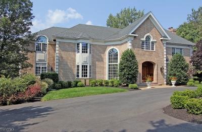 Livingston Twp. Single Family Home For Sale: 3 Bushkill Dr