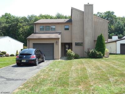 Old Bridge Twp. Single Family Home For Sale: 163 Community Cir