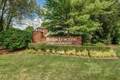 Florham Park Boro Condo/Townhouse For Sale: 39 Brandywyne Dr