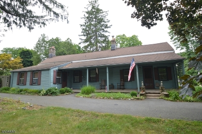 Florham Park Boro Single Family Home For Sale: 309 Brooklake Rd