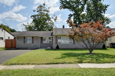 Rahway City Single Family Home For Sale: 253 Dukes Rd