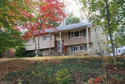 Randolph Twp. Single Family Home For Sale: 171 Park Ave
