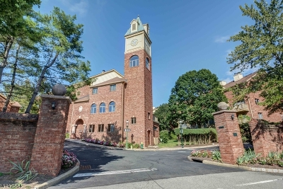 South Orange Village Twp. Condo/Townhouse For Sale: 16 Mews Ln