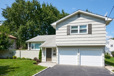 Springfield Twp. Single Family Home For Sale: 288 Mountain Ave