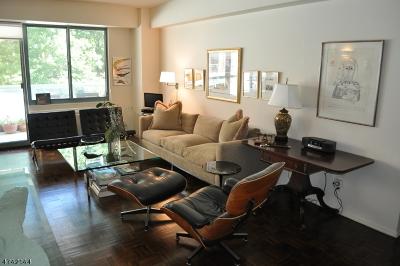 South Orange Village Twp. Condo/Townhouse For Sale: 609 S Orange Ave 2k #2K