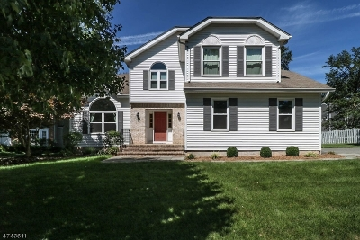Bedminster Twp. Single Family Home For Sale: 2 Steeple Chase Ct