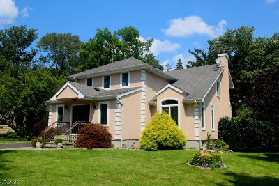 Warren Twp. Single Family Home For Sale: 34 Fairfield Ave