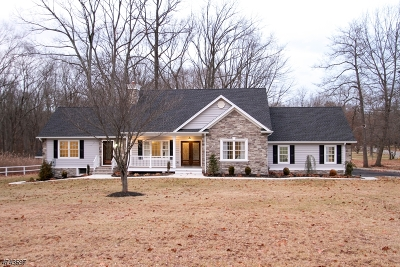 Long Hill Twp Single Family Home For Sale: 368 Meyersville Rd