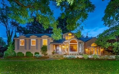 Westfield Town Single Family Home For Sale: 1040 Wychwood Rd