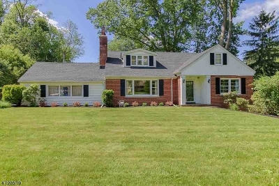 Morris Twp. Single Family Home For Sale: 6 Turtle Rd