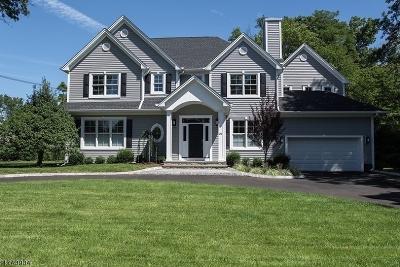 Livingston Twp. Single Family Home For Sale: 252 W Hobart Gap Rd