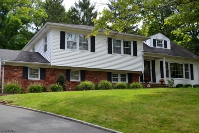 New Providence Boro Single Family Home For Sale: 15 Hickory Pl