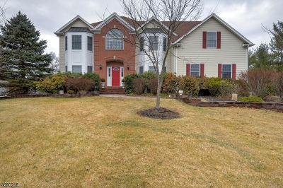 Bedminster Twp. Single Family Home For Sale: 106 Clucas Brook Rd