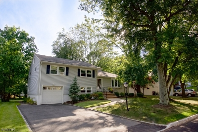West Orange Twp. Single Family Home For Sale: 36 Rosemont Ter