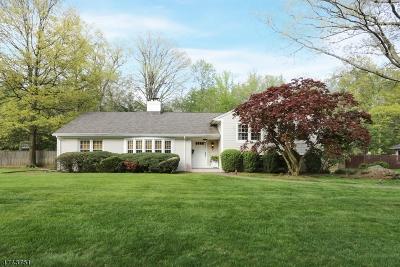 Livingston Twp. Single Family Home For Sale: 20 Ross Rd