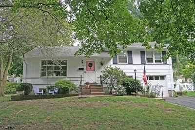 Madison Boro Single Family Home For Sale: 53 Canterbury Rd
