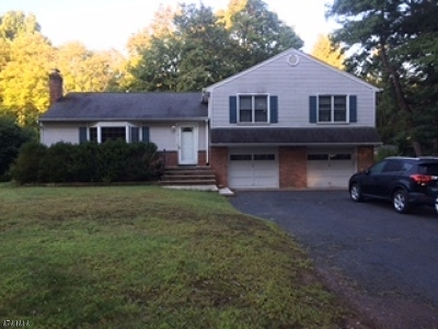 Morris Twp. Single Family Home For Sale: 39 Frederick Pl