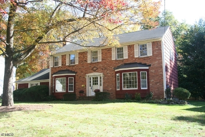 Berkeley Heights Twp. Single Family Home For Sale: 21 Bristol Ct