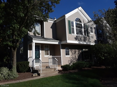 Bedminster Twp. Single Family Home For Sale: 217 Long Meadow Rd