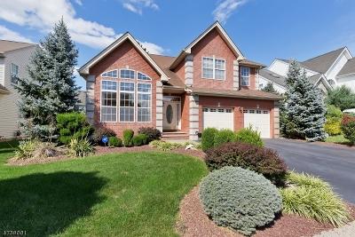 Bridgewater Twp. Single Family Home For Sale: 17 Jenna Dr