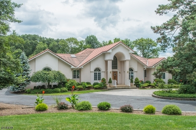 Long Hill Twp Single Family Home For Sale: 56 Mountain Ave