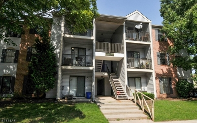 Piscataway Twp. Condo/Townhouse For Sale: 292 Hampshire Ct