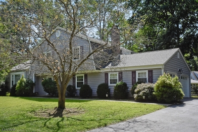 Morris Plains Boro Single Family Home For Sale: 41 Cutler Dr