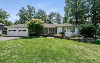 Berkeley Heights Twp. Single Family Home For Sale: 44 Spring Ridge Dr