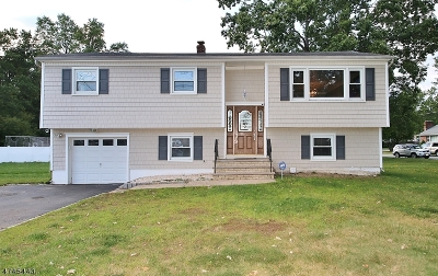 East Hanover Twp. Single Family Home For Sale: 444 River Rd